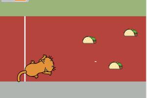 Thumbnail raner cat